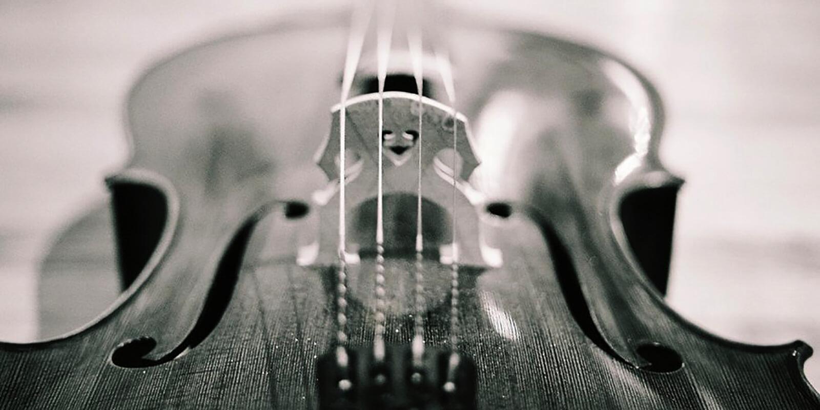 Разные ноты для виолончели